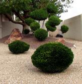 landscaping work that is done the right way by our contractors